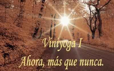 Viniyoga, ahora más que nunca. I