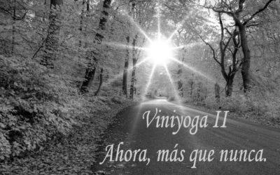 Viniyoga, ahora más que nunca.     II