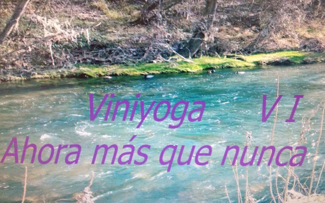 Viniyoga, ahora más que nunca.  VI